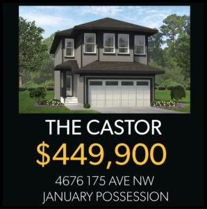 North Edmonton Single family home for sale