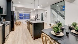 South Edmonton Townhome by City Homes Master Builder